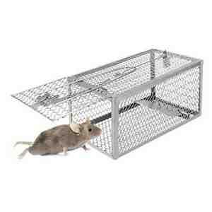Piege a rat