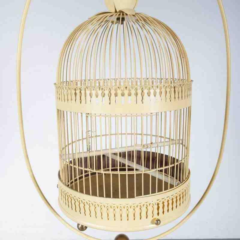 Quelle taille de cage pour un canari ?