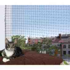 Comment empêcher un chat de passer ?