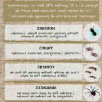 Quelle huile essentielle pour faire fuir les mouches ?